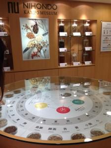 漢方ミュージアムの内観
